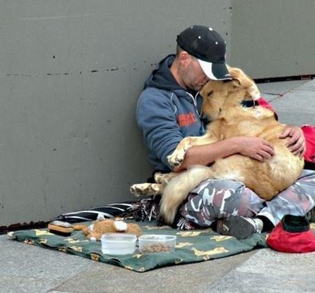 Anjing tidak akan pernah memandang kamu kaya ataupun miskin