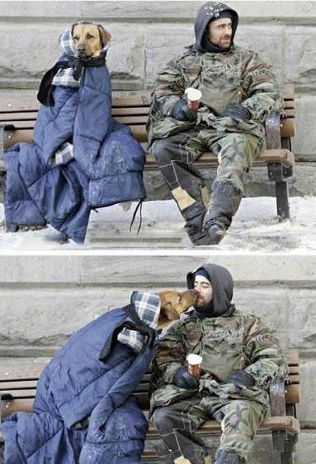 Anjing tidak akan pernah memandang kamu kaya ataupun miskin2