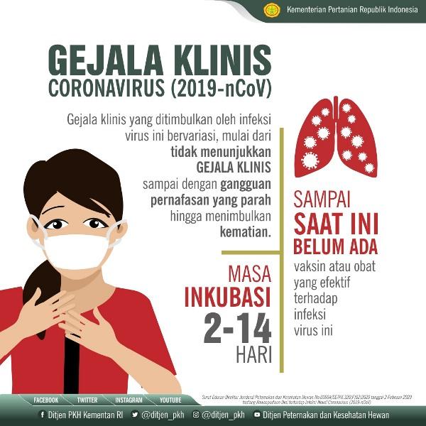 mengenali gejala virus corona